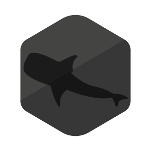 whale-shark-package